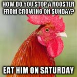 rooster | HOW DO YOU STOP A ROOSTER FROM CROWING ON SUNDAY? EAT HIM ON SATURDAY | image tagged in rooster | made w/ Imgflip meme maker