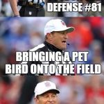 personal fowl | PERSONAL FOUL ON THE DEFENSE #81 BRINGING A PET BIRD ONTO THE FIELD | image tagged in funny,memes,ed hochuli,bad pun,bad pun ed hochuli,football | made w/ Imgflip meme maker