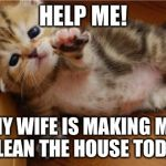 Help Me Kitten | HELP ME! MY WIFE IS MAKING ME CLEAN THE HOUSE TODAY | image tagged in help me kitten,memes | made w/ Imgflip meme maker