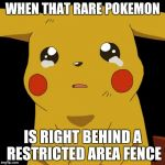 That moment when | WHEN THAT RARE POKEMON IS RIGHT BEHIND A RESTRICTED AREA FENCE | image tagged in pikachu crying,pokemon go | made w/ Imgflip meme maker
