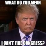 Fallacies of a would be king | WHAT DO YOU MEAN I CAN'T FIRE CONGRESS? | image tagged in donald trump sulk | made w/ Imgflip meme maker