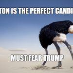 Ostrich head in sand Meme Generator - Imgflip - photo#3