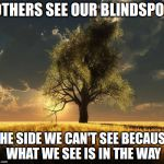 Tree of Life | OTHERS SEE OUR BLINDSPOT THE SIDE WE CAN'T SEE BECAUSE WHAT WE SEE IS IN THE WAY | image tagged in tree of life | made w/ Imgflip meme maker