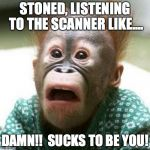 Shocked Monkey | STONED, LISTENING TO THE SCANNER LIKE.... DAMN!!  SUCKS TO BE YOU! | image tagged in stoned,high,marijuana,paranoid,police scanner | made w/ Imgflip meme maker