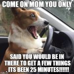 Rage Corgi | COME ON MOM YOU ONLY SAID YOU WOULD BE IN THERE TO GET A FEW THINGS . ITS BEEN 25 MINUTES!!!!!! | image tagged in rage corgi | made w/ Imgflip meme maker