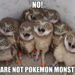 The Case of Mistaken Identity | NO! WE ARE NOT POKEMON MONSTERS | image tagged in surprised ownls,pokemon go | made w/ Imgflip meme maker