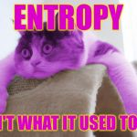 RayCat Stare | ENTROPY ISN'T WHAT IT USED TO BE | image tagged in raycat stare,memes | made w/ Imgflip meme maker
