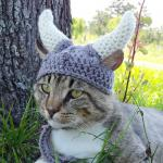 Viking cat crochete hat meme