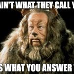cowardly lion | IT AIN'T WHAT THEY CALL YOU IT'S WHAT YOU ANSWER TO. | image tagged in cowardly lion | made w/ Imgflip meme maker