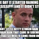 Forest Gump | ONE DAY IT STARTED RAINING IN MISSISSIPPI AND IT DIDN'T STOP... WE GOT  LITTLE BITTY STINGIN RAIN, BIG OLE FAT RAIN,RAIN THAT CAME IN SIDEWA | image tagged in forest gump | made w/ Imgflip meme maker