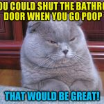 Disgusted Fold (A Galileo10 Template) | IF YOU COULD SHUT THE BATHROOM DOOR WHEN YOU GO POOP THAT WOULD BE GREAT! | image tagged in disgusted fold,funny meme,cats,bathroom,doors,laughs | made w/ Imgflip meme maker