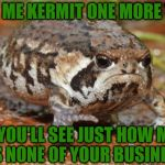 Grumpy Toad Meme | CALL ME KERMIT ONE MORE TIME AND YOU'LL SEE JUST HOW MUCH IT'S NONE OF YOUR BUSINESS! | image tagged in memes,grumpy toad,two can play this game,connery and grumpy toad team up,life is hard for a toad | made w/ Imgflip meme maker