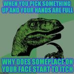 WHEN YOU PICK SOMETHING UP AND YOUR HANDS ARE FULL WHY DOES SOMEPLACE ON YOUR FACE START TO ITCH | image tagged in memes,philosoraptor | made w/ Imgflip meme maker