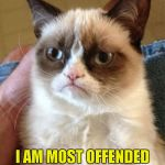 I have pretty thick skin myself...how about you? | I AM MOST OFFENDED BY THE EASILY OFFENDED | image tagged in memes,grumpy cat | made w/ Imgflip meme maker