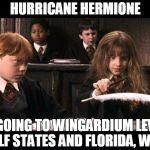 19nzon hurricane hermione meme generator imgflip