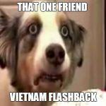 vietnam flashback dog Meme Generator - Imgflip