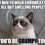 Have Grump Will Travel | IF YOU HAD TO WALK AROUND AT FLOOR LEVEL ALL DAY SMELLING PEOPLE'S FEET YOU'D BE GRUMPY TOO GRUMPY | image tagged in memes,grumpy cat bed,grumpy cat,bad smell,feet,grumpy cat origins | made w/ Imgflip meme maker