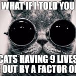 Morpheus Cat | WHAT IF I TOLD YOU CATS HAVING 9 LIVES IS OUT BY A FACTOR OF 9 | image tagged in morpheus cat | made w/ Imgflip meme maker