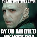 Voldemort | I THROW MY WAND UP IN THE AIR SOMETIMES SAYIN AY OH WHERE'D MY NOSE GO? | image tagged in voldemort | made w/ Imgflip meme maker