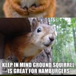 bad pun squirrel | WHEN DECIDING WHETHER TO HUNT TREE SQUIRREL OR GROUND SQUIRREL KEEP IN MIND GROUND SQUIRREL IS GREAT FOR HAMBURGERS | image tagged in bad pun squirrel | made w/ Imgflip meme maker