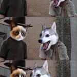 Grumpy Cat and Bad Pun Dog meme