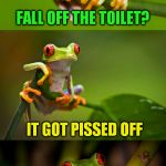 Frog Puns (My daughter insisted we do this one lol) | FALL OFF THE TOILET? IT GOT PISSED OFF WHY DID THE FLY | image tagged in frog puns,flies,pissed off,jokes,laughs,toilet humor | made w/ Imgflip meme maker