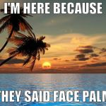 and go west | I'M HERE BECAUSE THEY SAID FACE PALM | image tagged in memes,palm trees sunset | made w/ Imgflip meme maker