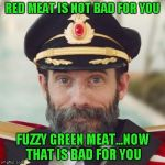 I could never be a vegetarian...I love steak way too much...but if a steak is green, it grew into a vegetable. | RED MEAT IS NOT BAD FOR YOU FUZZY GREEN MEAT...NOW THAT IS BAD FOR YOU | image tagged in thanks captain obvious,memes | made w/ Imgflip meme maker