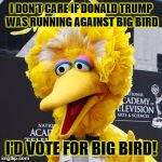 Big Bird Meme | I DON'T CARE IF DONALD TRUMP WAS RUNNING AGAINST BIG BIRD I'D VOTE FOR BIG BIRD! | image tagged in memes,big bird | made w/ Imgflip meme maker