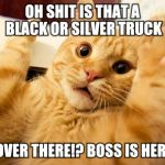 scared cat | OH SHIT IS THAT A BLACK OR SILVER TRUCK I SEE OVER THERE!? BOSS IS HERE RUN | image tagged in scared cat | made w/ Imgflip meme maker