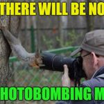 Dead Memes Week Jehovah Witness Squirrel | THERE WILL BE NO PHOTOBOMBING ME | image tagged in memes,jehovas witness squirrel,dead memes week,photobombs,photography | made w/ Imgflip meme maker