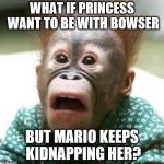 Shocked Monkey | WHAT IF PRINCESS WANT TO BE WITH BOWSER BUT MARIO KEEPS KIDNAPPING HER? | image tagged in shocked monkey | made w/ Imgflip meme maker