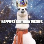 1ctqhi happy birthday alpaca meme generator imgflip,Alpaca Meme Generator
