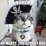 Spangles Meme | NO RUM NO MERCY, YOU SCURVY DOG | image tagged in memes,spangles | made w/ Imgflip meme maker