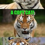 Tiger Puns | WHAT'S A TIGER RUNNING A PHOTOCOPY MACHINE CALLED? A COPY CAT! | image tagged in tiger puns,funny memes,jokes,tigers,photocopy,copy cat | made w/ Imgflip meme maker