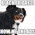 Crazy Dawg Meme | BLACK FRIDAY?! SHOW ME THE ADS!! | image tagged in memes,crazy dawg | made w/ Imgflip meme maker