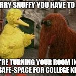 Big Bird And Snuffy Meme | SORRY SNUFFY YOU HAVE TO GO WE'RE TURNING YOUR ROOM INTO A SAFE-SPACE FOR COLLEGE KIDS | image tagged in memes,big bird and snuffy | made w/ Imgflip meme maker