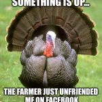 Saw this on FB and chuckled | SOMETHING IS UP... THE FARMER JUST UNFRIENDED ME ON FACEBOOK | image tagged in memes,turkey,facebook | made w/ Imgflip meme maker