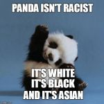 Panda | PANDA ISN'T RACIST IT'S BLACK IT'S WHITE AND IT'S ASIAN | image tagged in panda | made w/ Imgflip meme maker