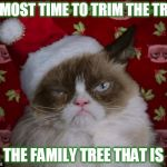 Time To Trim The Family Tree | ALMOST TIME TO TRIM THE TREE THE FAMILY TREE THAT IS | image tagged in grumpy cat christmas,christmas,christmas tree,trim the tree,is that a clue on the tree | made w/ Imgflip meme maker