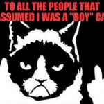 "I never knew Grumpy Cat was a girl until recently... | TO ALL THE PEOPLE THAT ASSUMED I WAS A ""BOY"" CAT 