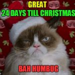 The 24 Memes Till Christmas Event (I shall be doing one Christmas meme a day till Christmas :)  | GREAT 24 DAYS TILL CHRISTMAS BAH HUMBUG | image tagged in grumpy cat christmas,funny memes,grumpy cat,bah humbug,funny,christmas memes | made w/ Imgflip meme maker