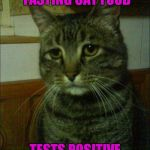 Depressed Cat Meme | GETS DREAM JOB TASTING CAT FOOD TESTS POSITIVE FOR CATNIP | image tagged in memes,depressed cat | made w/ Imgflip meme maker