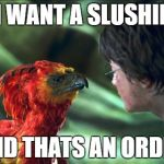 Phoenix Harry potter | I WANT A SLUSHIE AND THATS AN ORDER | image tagged in phoenix harry potter | made w/ Imgflip meme maker