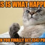 finally | THIS IS WHAT HAPPENS WHEN YOU FINALLY GET 1347 POINTS | image tagged in success cat | made w/ Imgflip meme maker
