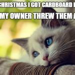 First World Problems Cat Meme | FOR CHRISTMAS I GOT CARDBOARD BOXES, BUT MY OWNER THREW THEM AWAY. | image tagged in memes,first world problems cat | made w/ Imgflip meme maker