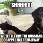 Dogs | SHHHH!!!! WE'LL TELL HIM THE RUSSIANS CRAPPED IN THE HALLWAY | image tagged in dogs | made w/ Imgflip meme maker