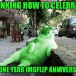 RayCat chillin' | THINKING HOW TO CELEBRATE MY ONE YEAR IMGFLIP ANNIVERSARY | image tagged in raycat relaxing,memes | made w/ Imgflip meme maker