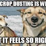 Original Stoner Dog Meme | PSA: CROP DUSTING IS WRONG BUT IT FEELS SO RIGHT... | image tagged in memes,original stoner dog | made w/ Imgflip meme maker