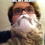 Surprised CatMan Meme | HOW DO YOU LIKE MY BEARD HIS NAME IS FLUFFY | image tagged in memes,surprised catman | made w/ Imgflip meme maker